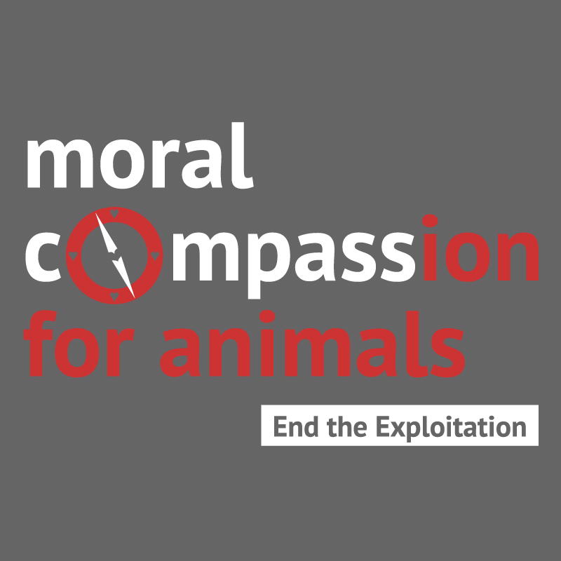 Dirty Snouts Moral Compassion for Animals Shirt Front Detail