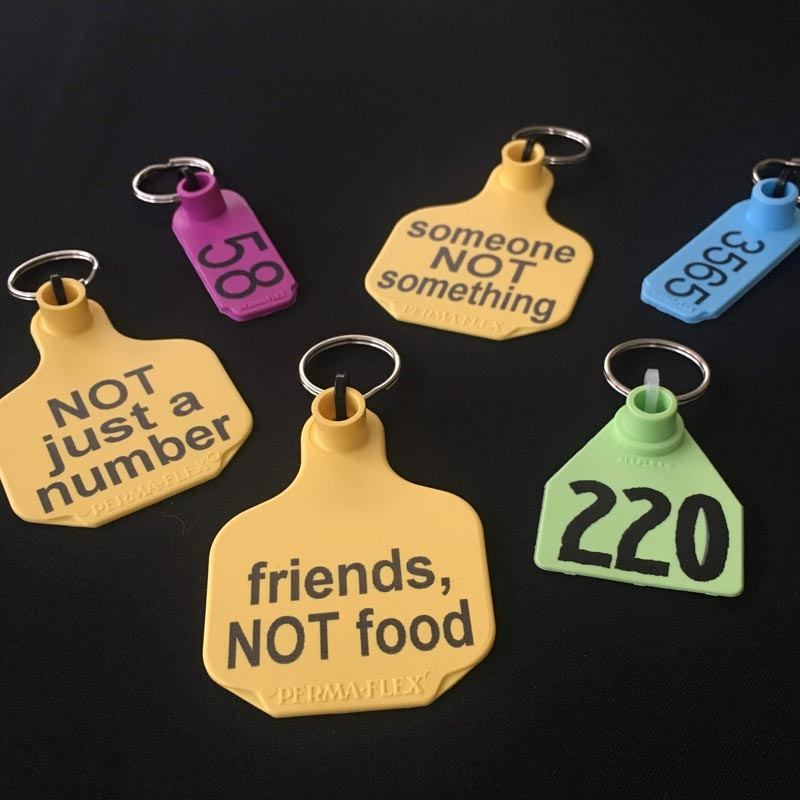 Dirty Snouts Animal Ear Tag Key Rings Grouping