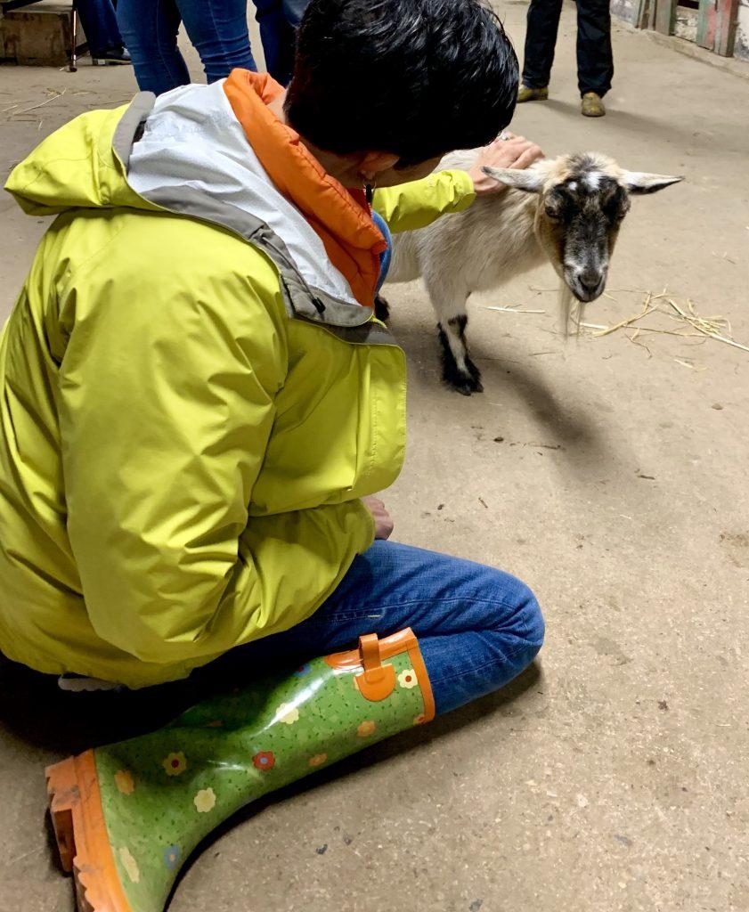 me petting goat at animal sanctuary