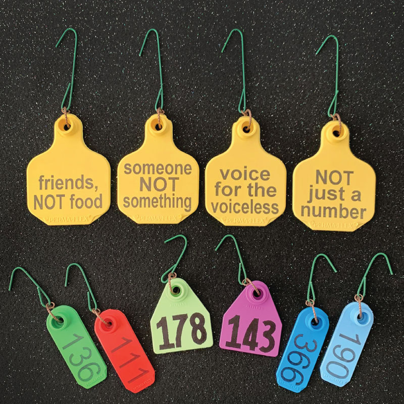 Dirty Snouts Ear Tag Ornaments 10 pack