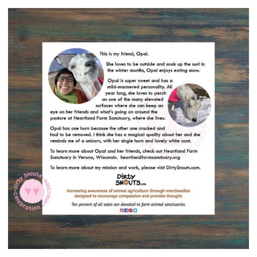 Opal sunning info sheet