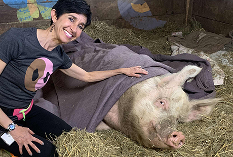 Stacey and Winnie, the pig